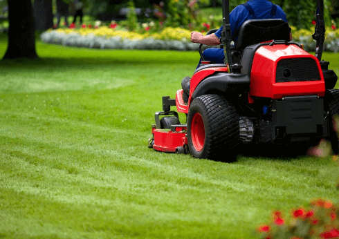care for lawn