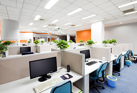 decorate office with flower