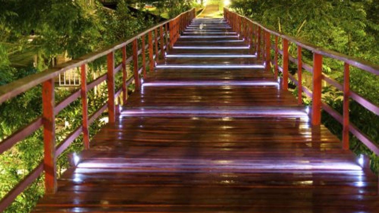Landscape Design Professional Walkway